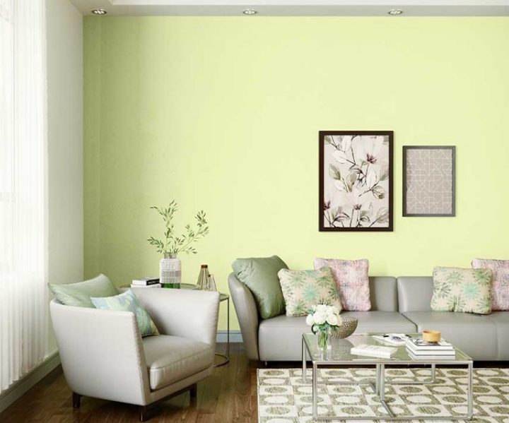 Try Lime Delight House Paint Colour Shades For Walls Asian Paints