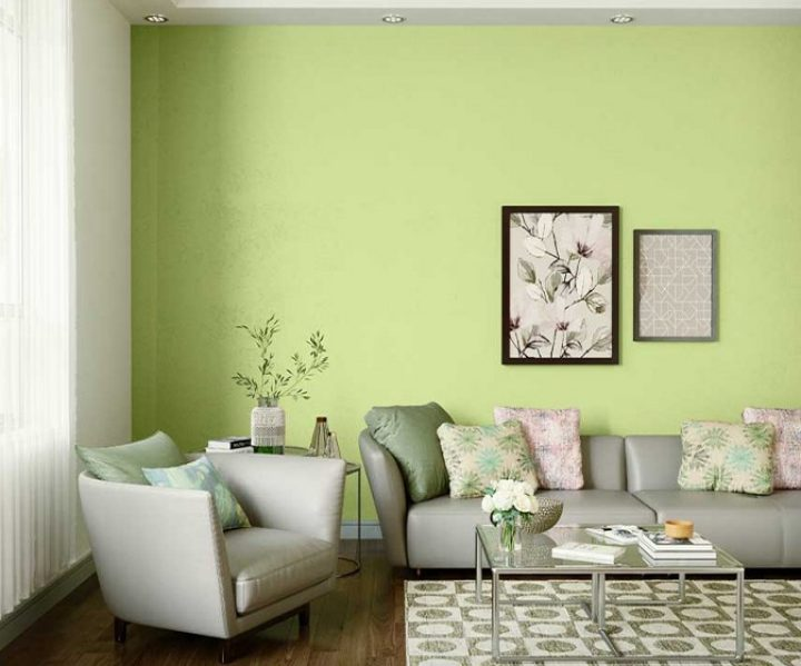 Try Pristine Green House Paint Colour Shades For Walls Asian Paints