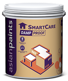 Smartcare Damp Proof Waterproofing Damp Protection Solution Asian Paints