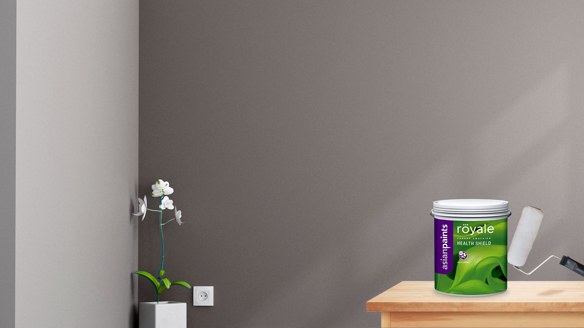 Anti Bacterial Paint for a Healthy Home - Royale Health